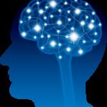 脳を支配しているのは「心」